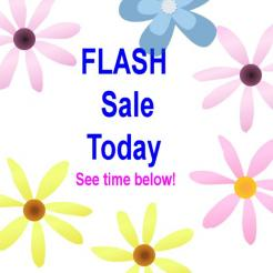 Flash Sale Today!