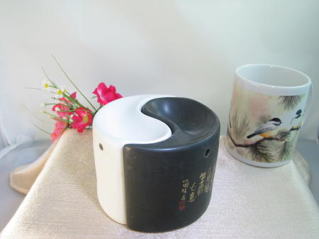 Yin & Yang Diffuser