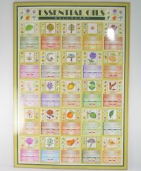Essential oil Wall Chart